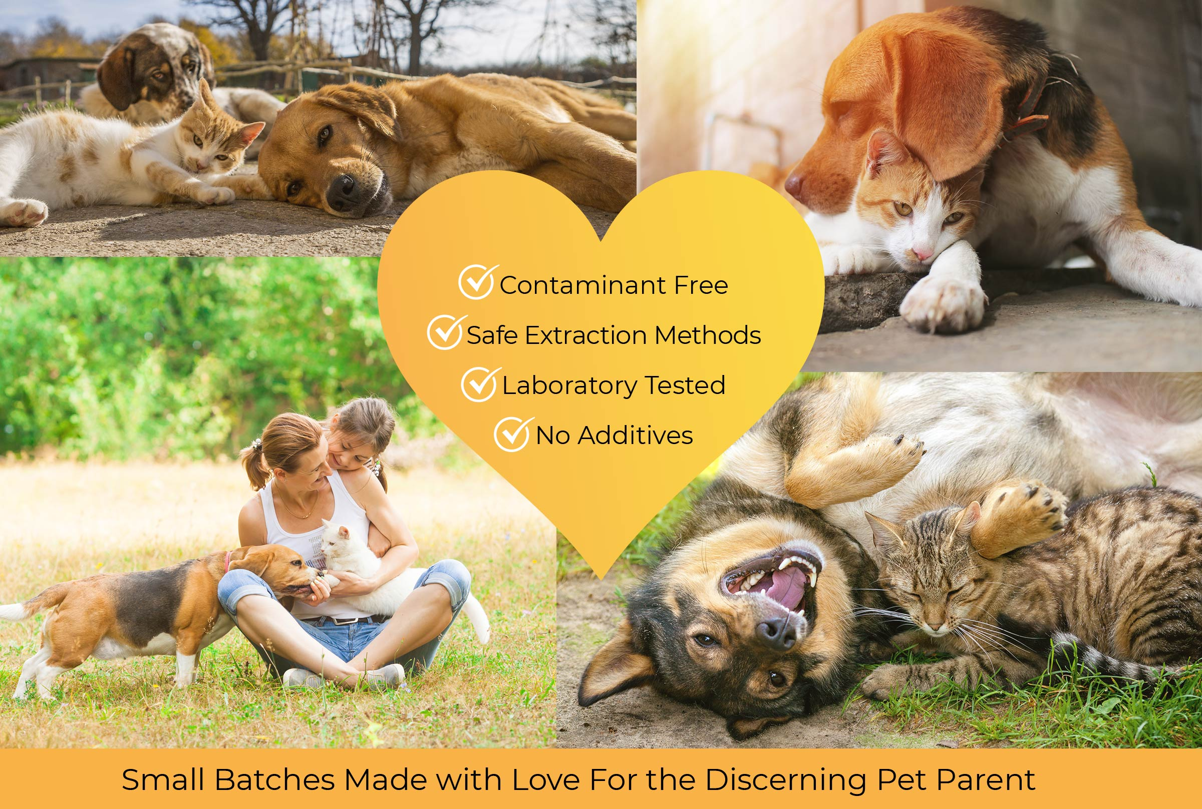 All Natural CBD Oil for Cats and Dogs - Lab Tested - Contaminant Free